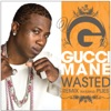 Wasted (feat. Plies) [Remix] - Single