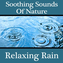 Soothing Sounds of Nature: Relaxing Rain