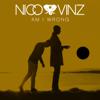 Am I Wrong - Nico & Vinz mp3