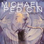 Michael Pedicin - Song of the Underground Railroad