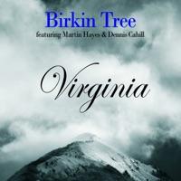 Virginia (Bonus Track Version) by Birkin Tree on Apple Music