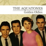 The Aquatones - She's the One for Me