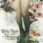 Chris Thile - Brakeman's Blues