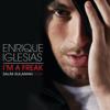 I'm a Freak (Salim-Sulaiman Remix) - Enrique Iglesias