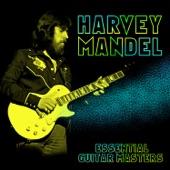 Harvey Mandel - Nashville 1 AM