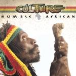 Culture - Revolution