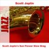 Scott Joplin's Sun Flower Slow Drag ジャケット写真