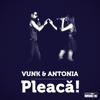 Vunk & Antonia - Pleaca artwork