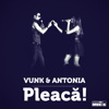 VUNK & Antonia - Pleaca artwork