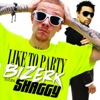 Like to Party (feat. Shaggy) - Single, Bizerk
