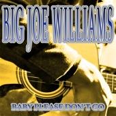 Big Joe Williams - Ride in My Car Blues