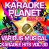 Various Musical Karaoke Hits, Vol. 30 - Karaoke Planet ジャケット写真