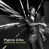 Pigeon John - To Do List