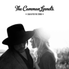 The Common Linnets - Calm After the Storm (Radio Edit) kunstwerk