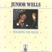 Junior Wells - I'll Take Care of You (feat. Buddy Guy Orchestra)