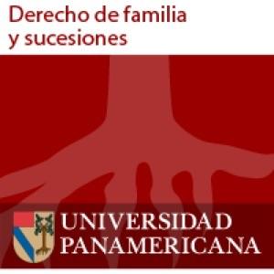 Los nuevos paradigmas de Derecho de familia y sucesiones