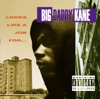 Looks Like a Job For... - Big Daddy Kane Cover Art