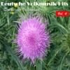 Deutsche Volksmusik Hits - Duette der Volksmusik, Vol. 4