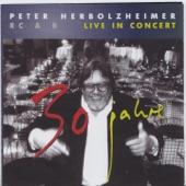 Peter Herbolzheimer Rhythm Combination & Brass - Stolen Moments