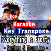 K-Pop Karaoke Key Transpose - 다 예뻐 (Everything Is Pretty)