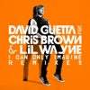 I Can Only Imagine (feat. Chris Brown & Lil Wayne) - Single, David Guetta