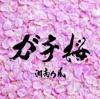 ガチ桜 - EP ジャケット写真