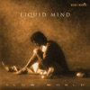 Liquid Mind II Slow World