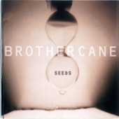 Brother Cane - And Fools Shine On