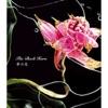 夢の花 - EP ジャケット写真