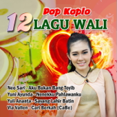 Download Lagu MP3 Via Vallen - Baik Baik Sayang