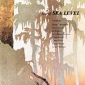 Sea Level - Tidal Wave