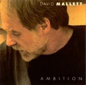 David Mallett - Walkin'