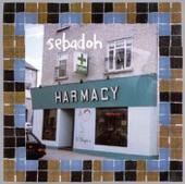 Sebadoh - Beauty of the Ride