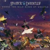 Atwater-Donnelly - Blind Fiddler