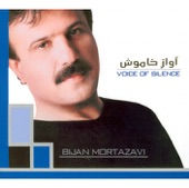 Bijan Mortazavi - Voice Of Silence