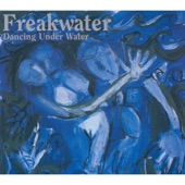 Freakwater - A Song You Could Cry For