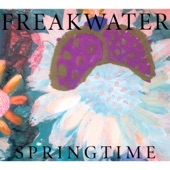 Freakwater - Picture in My Mind