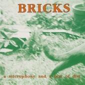 Bricks - You Shouldn't Have Smashed Your Guitar