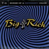 Big & Rich - Love Train