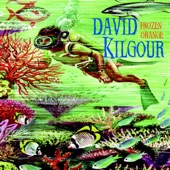 David Kilgour - Gold In Sound
