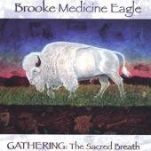Brooke Medicine Eagle - Spirit That Moves
