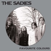 The Sadies - Why Would Anybody Live Here?