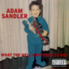 Adam Sandler - The Chanukah Song  artwork
