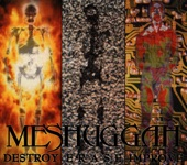 Meshuggah - Inside What's Within Behind