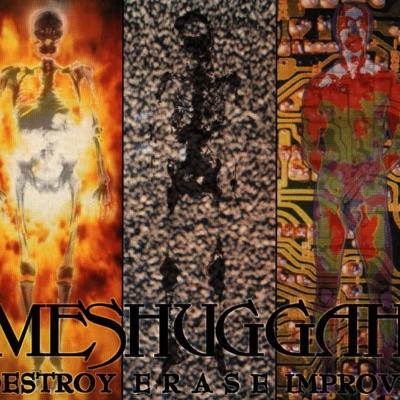 Destroy Erase Improve - Meshuggah