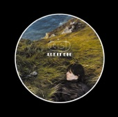 Feist - Leisure Suite