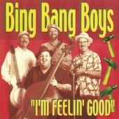 Bing Bang Boys - Got the Farmland Blues