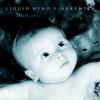 Liquid Mind V: Serenity - Liquid Mind
