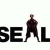 Seal - Crazy artwork