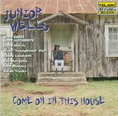 Junior Wells - Give Me One Reason